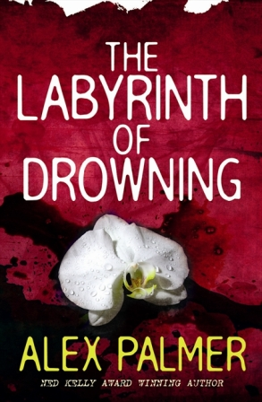 Alex Palmer Labyrinth Of Drowning Cover
